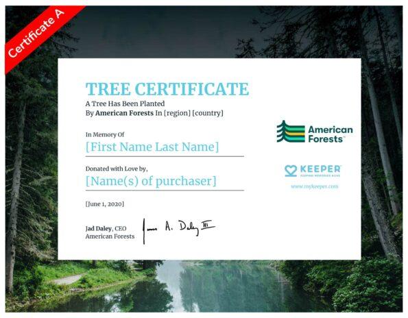 E-Certificate A