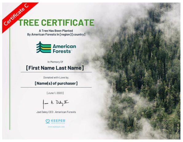 E-Certificate C
